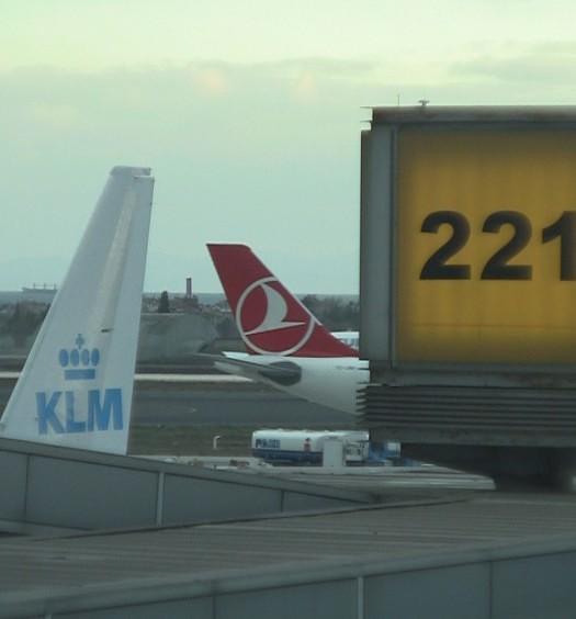 KLM 737-800