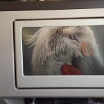 Personal TV in Business Class