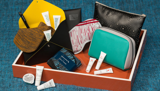 Looking for a new Handbag? American Airlines Thinks This Should be it.