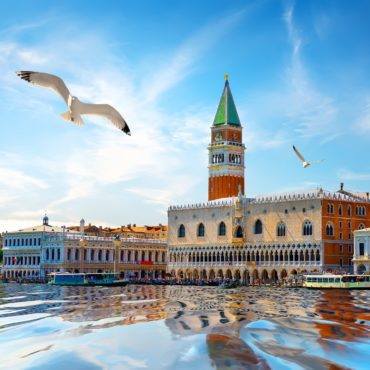 Seagulls and San Marco