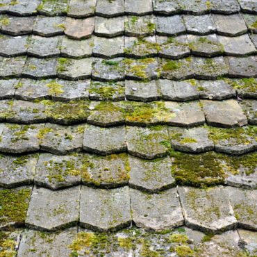 Old worn shingles