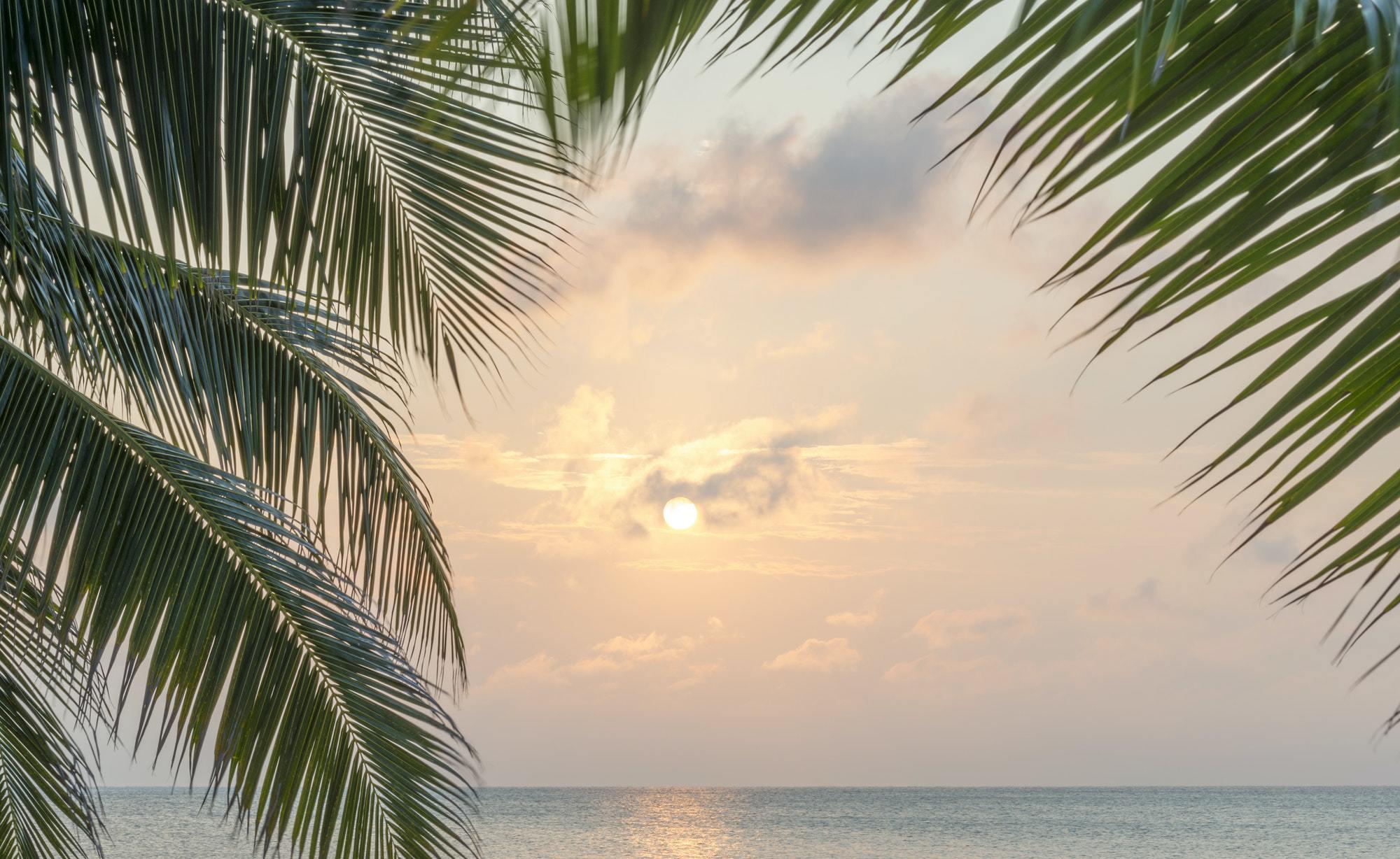 Luxury & Lighthouses. 5 Caribbean Must-Visit Islands.